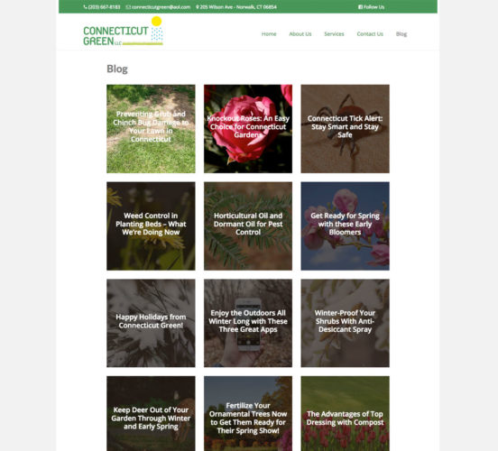 Connecticut Green Redesigned Blog Page