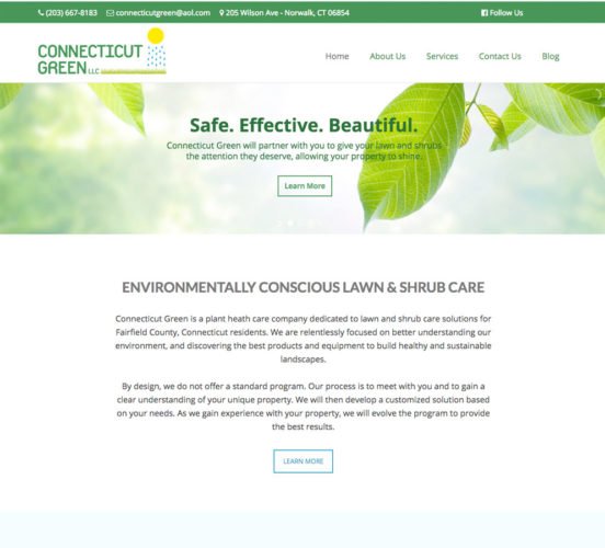 Connecticut Green Redesigned Home Page