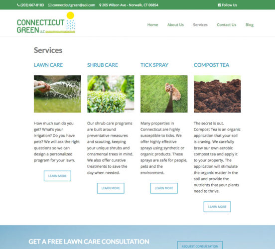 Connecticut Green Redesigned Services Page