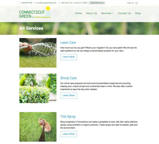 Connecticut Green Old Services Page